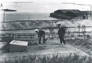Foreground. Pilots Richard Young (white cap) and John Burn tend their allotments on the Lawe 1918 - 19