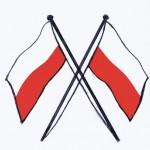 Pilot Flags